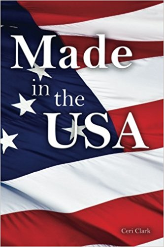 Made in the USA: A Discreet Internet Password Book for People Who Love the USA (Disguised Password Book Series)